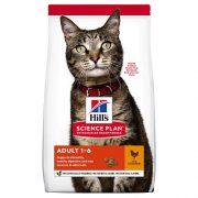 הילס חתול בוגר עוף 15 ק