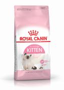 רויאל קנין חתול קיטן אוכל לגורי חתולים