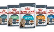 רויאל קנין לחתולים - פאוץ' במגוון טעמים 85 גרם Royal Canin