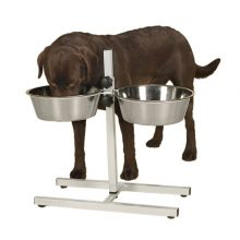 כלי אוכל ומים לכלבים