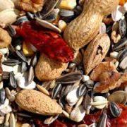 אוכל לג'אקו תערובת זרעים לג'אקו ותוכים גדולים